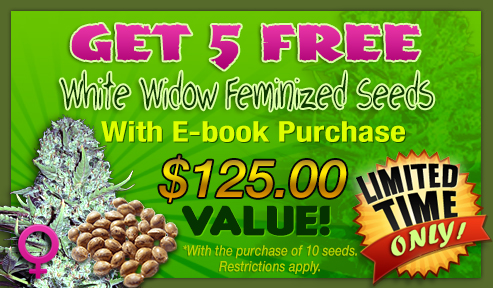 growing pot
