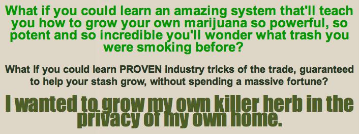 weed-high1
