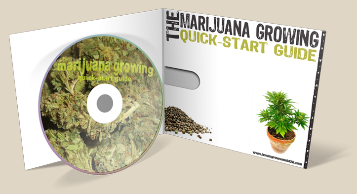 growing elite marijuana the complete guide pdf download