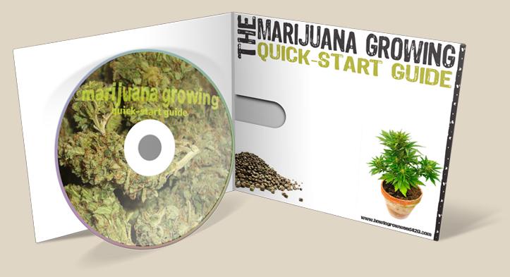 grow forums