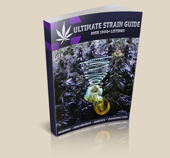 best marijuana grow book for beginners